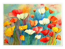 Juliste Colorful poppies