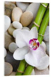 Akryylilasitaulu  Bamboo and orchid - Andrea Haase Foto