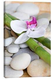 Canvas-taulu  Bamboo and orchid II - Andrea Haase Foto