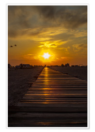 Juliste  Evening sun in St Peter Ording on the North Sea - Dennis Stracke