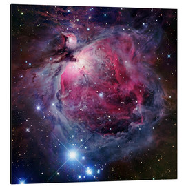 Alumiinitaulu  The Orion Nebula - Robert Gendler