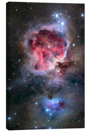 Canvas-taulu  The Orion Nebula - Roth Ritter