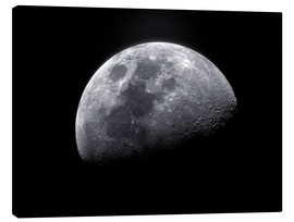 Canvas-taulu  Waxing gibbous moon - Roth Ritter