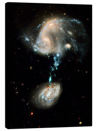 Canvas-taulu  Interacting galaxies Arp 194, HST image - NASA
