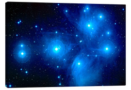 Canvas-taulu  Pleiades star cluster (M45) - NASA