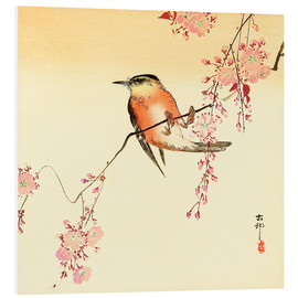 PVC-taulu  Red Bird and Cherry Blossoms - Ohara Koson