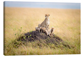 Canvas-taulu  Leopard mother - Ted Taylor