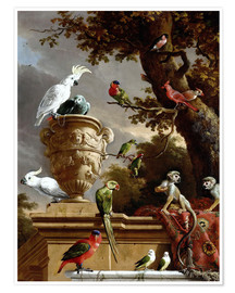 Juliste  The Menagerie - Melchior de Hondecoeter