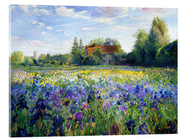 Akryylilasitaulu  Field of flowers in the sunset - Timothy Easton