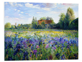 PVC-taulu  Field of flowers in the sunset - Timothy Easton