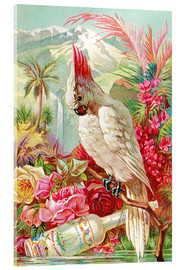 Akryylilasitaulu  Cocktail Cockatoo - Advertising Collection