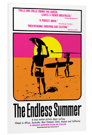 PVC-taulu  The Endless Summer - Entertainment Collection
