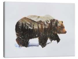 Canvas-taulu  Arctic grizzly bear - Andreas Lie