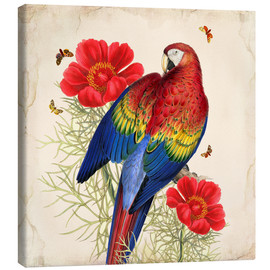 Canvas-taulu  Oh My Parrot III - Mandy Reinmuth