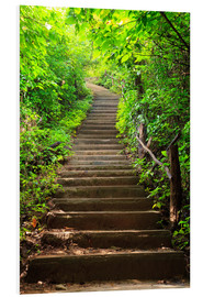 PVC-taulu  Stairway through the forest