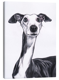 Canvas-taulu  Whippet, blue and white - Jim Griffiths