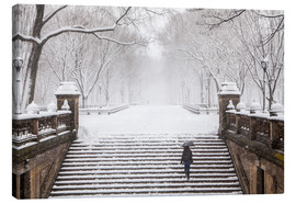 Canvas-taulu  Winter in Central Park