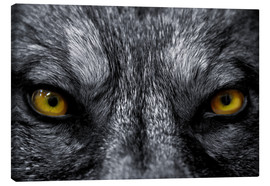 Canvas-taulu  The evil wolf