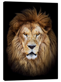Canvas-taulu  King of the Jungle Portrait