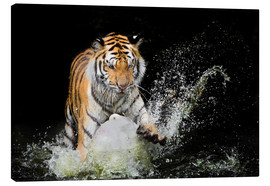 Canvas-taulu  Tiger Makes the water