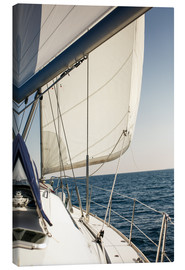 Canvas-taulu  White sails in the open sea