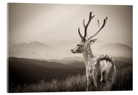 Akryylilasitaulu  Stag in the mountains