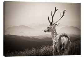 Canvas-taulu  Stag in the mountains