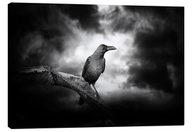 Canvas-taulu  Raven in the moonlight
