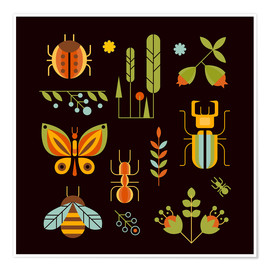 Juliste  Retro Insects