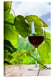Canvas-taulu  glass with red wine in vineyard
