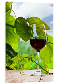 PVC-taulu  glass with red wine in vineyard