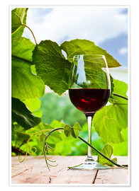 Juliste  glass with red wine in vineyard