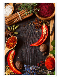 Juliste  Hot spices and herbs