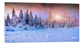 PVC-taulu  winter sunrise in the mountain forest