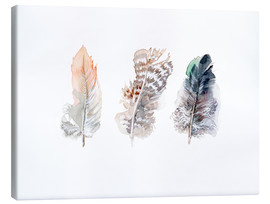 Canvas-taulu  3 feathers - Verbrugge Watercolor