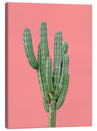 Canvas-taulu  Cactus in pink - Finlay and Noa