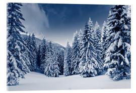 Akryylilasitaulu  Winter landscape with snow covered trees