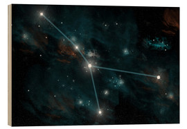 Puutaulu  An artist's depiction of the constellation Cancer. - Marc Ward