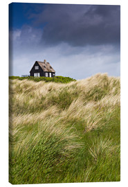 Canvas-taulu  Cottage in the dunes during storm