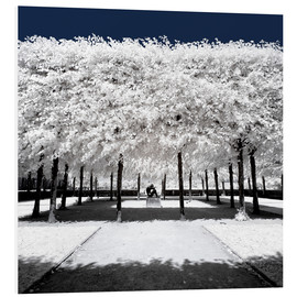 PVC-taulu  Infrared rime in the park - Philippe HUGONNARD