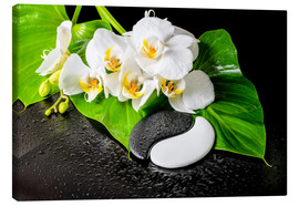 Canvas-taulu  White orchids and Yin-Yang stones