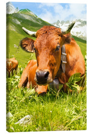 Canvas-taulu  Cow with bell on mountain pasture