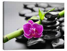 Canvas-taulu  Basalt stones, bamboo and orchid