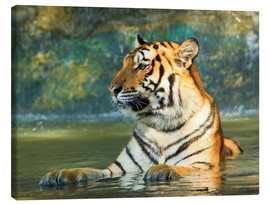 Canvas-taulu  Tiger lying in the water