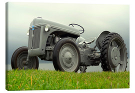 Canvas-taulu  The Ford 2N tractor