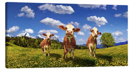 Canvas-taulu  Cows on the pasture - Michael Rucker