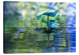 Canvas-taulu  Water drops with bokeh - Stephan Geist