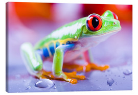 Canvas-taulu  colorful frog