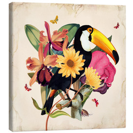 Canvas-taulu  Oh My Parrot XII - Mandy Reinmuth