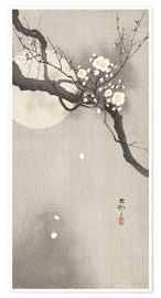 Juliste  Plum Blossoms at Night - Ohara Koson